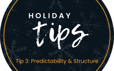 Holiday Tip #3:  Predictability & Structure